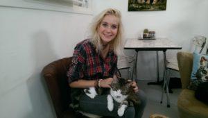 waarom miauwt een kat